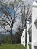 White picket fence in treelined meadow Stock Image