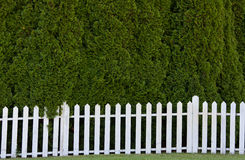 White pickett fence Stock Photography