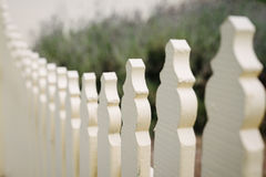 White picket fence, with lavender behind Stock Image