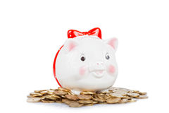 White the pig-coin box Royalty Free Stock Photos