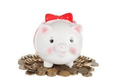 White  pig-coin box Stock Photos