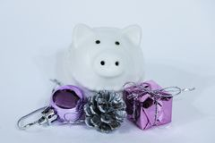 White pig sitting near the Christmas decoration. Cute little piglet for the New Year.  stock photos