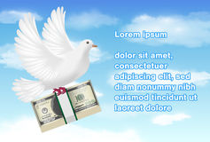 White pigeon holding banknotes flying in sky Stock Photography