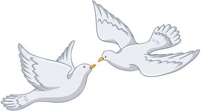 White Pigeons Flying Together. Vector illustration of two white pigeons flying together vector illustration