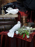 White pigeons Royalty Free Stock Image
