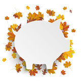 White Piggy Bank Autumn Foliage Stock Photos