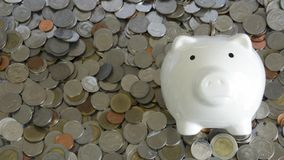 White piggy bank Stock Image