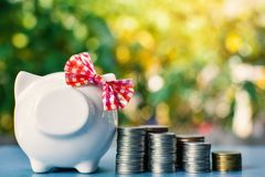 White piggy bank and coins on table tree bokeh background Stock Photos