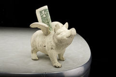 White Piggy Bank with Dollar Stock Image