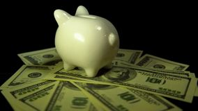 Piggy bank and dollar bills turn on a black background stock video