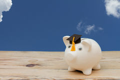 A white piggy bank with grad cap on weathered wood with sky back Royalty Free Stock Photos