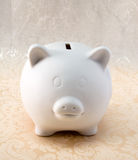 White Piggy on White Print Stock Photos