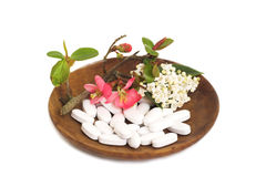 White Pills & flowers. White pills with japonica and lauristinus flowers on a wooden bowl Stock Photos