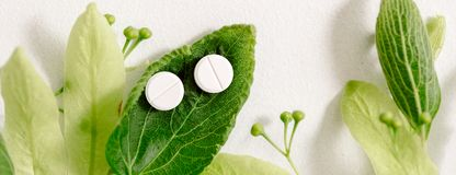 White pills on a green leaf, natural medicine concept. Banner white homeopathic tablets, green kidney leaves and linden flowers. a medicinal plant, natural stock photos