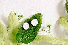 White pills on a green leaf, natural medicine concept. White homeopathic tablets, green kidney leaves and linden flowers. a medicinal plant, natural treatment stock photo