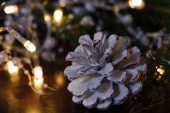 White pine cone with Christmas lights. In darkness Royalty Free Stock Photography