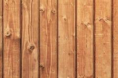 White Pine knöt yttersida för plankakojaväggen Arkivbild