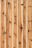 White Pine Knotted Planks Hut Wall Surface - Detail Royalty Free Stock Photos