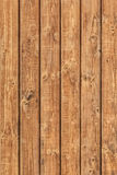 White Pine Planks Hut Wall Surface - Detail. White Pine plank hut wall texture, with wood knots and joint grooves Royalty Free Stock Photo
