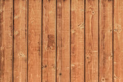 White Pine Planks Hut Wall Surface - Detail Royalty Free Stock Photos