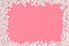 Cherry petals frame stock image