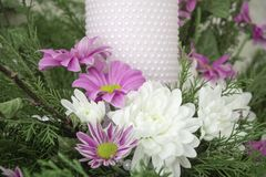 White and pink chrysanthemums with ivy and juniper branches. Festive flower arrangement. Chrysanthemums. And candle Stock Photography