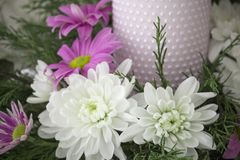 White and pink chrysanthemums with ivy and juniper branches. Festive flower arrangement. Chrysanthemums. And candle Stock Photo