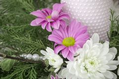 White and pink chrysanthemums with ivy and juniper branches. Festive flower arrangement. Chrysanthemums. And candle Royalty Free Stock Photos
