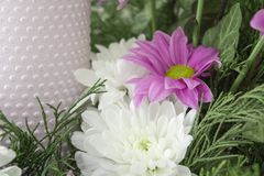 White and pink chrysanthemums with ivy and juniper branches. Festive flower arrangement. Chrysanthemums. And candle Royalty Free Stock Photography