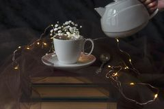 A white and pink colours porcelain tea cup and a spoon on three ancient books with gypsophila flowers in it, close up, still life stock image