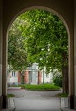 White and pink flowering horse-chestnut trees in an inner courtyard of a social housing in Vienna. Austria Stock Images