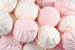 White and pink marshmallow Stock Images