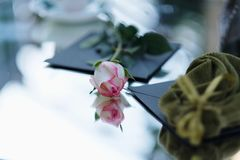 White and pink rose bud lying on a table stock photography