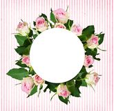 White and pink rose flowers bouquet and a round place for text. On pink striped background. Top view Royalty Free Stock Photo