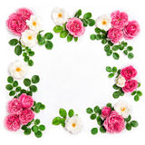 White pink rose flowers Floral flat lay background Stock Photo