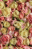 White and pink roses in wedding arrangement Stock Image