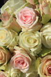 White and Pink roses in wedding arrangement Stock Photos
