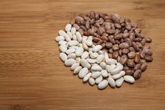 White Pinto and Navy beans Stock Images