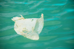 White plastic bag floating in the water Royalty Free Stock Images