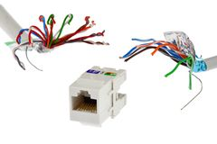 White plastic network RJ45 UTP female socket is chased by two UTP/STP cable wires that looks like tentacles of a monster, white ba. Ckground, artificial light royalty free stock photos