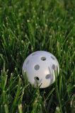 White Plastic Wiffle Golf Ball Stock Photography