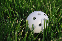 White Plastic Wiffle Golf Ball Royalty Free Stock Photo