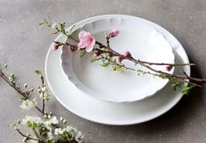 White Plate & Bowl. Fine white dinnerware plate bowl royalty free stock image