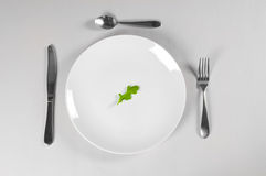 White Plate and Diet. With nutrition and hunger Stock Image