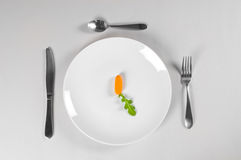White Plate and Diet. With nutrition and hunger Royalty Free Stock Image
