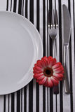 White plate with fork and knife. Royalty Free Stock Photography