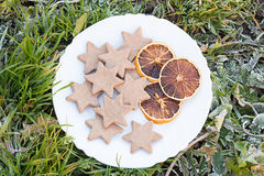 White Plate with Gingerbread Star Cookies and Citrus Fruit Chips on Frosted Grass. From Above Stock Image