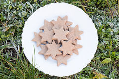 White Plate with Gingerbread Star Cookies on Frosted Grass. From Above Stock Photography