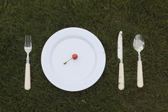 White plate on grass Stock Photo