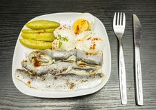 White plate with marinated herring in oil, boiled hard-boiled egg, cucumber and mayonnaise. Seasoned with pepper and paprika. Stock Images